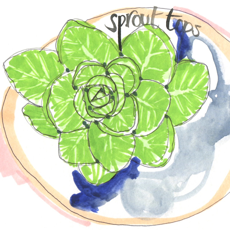 seasonal 1 - sprout tops with WORDS